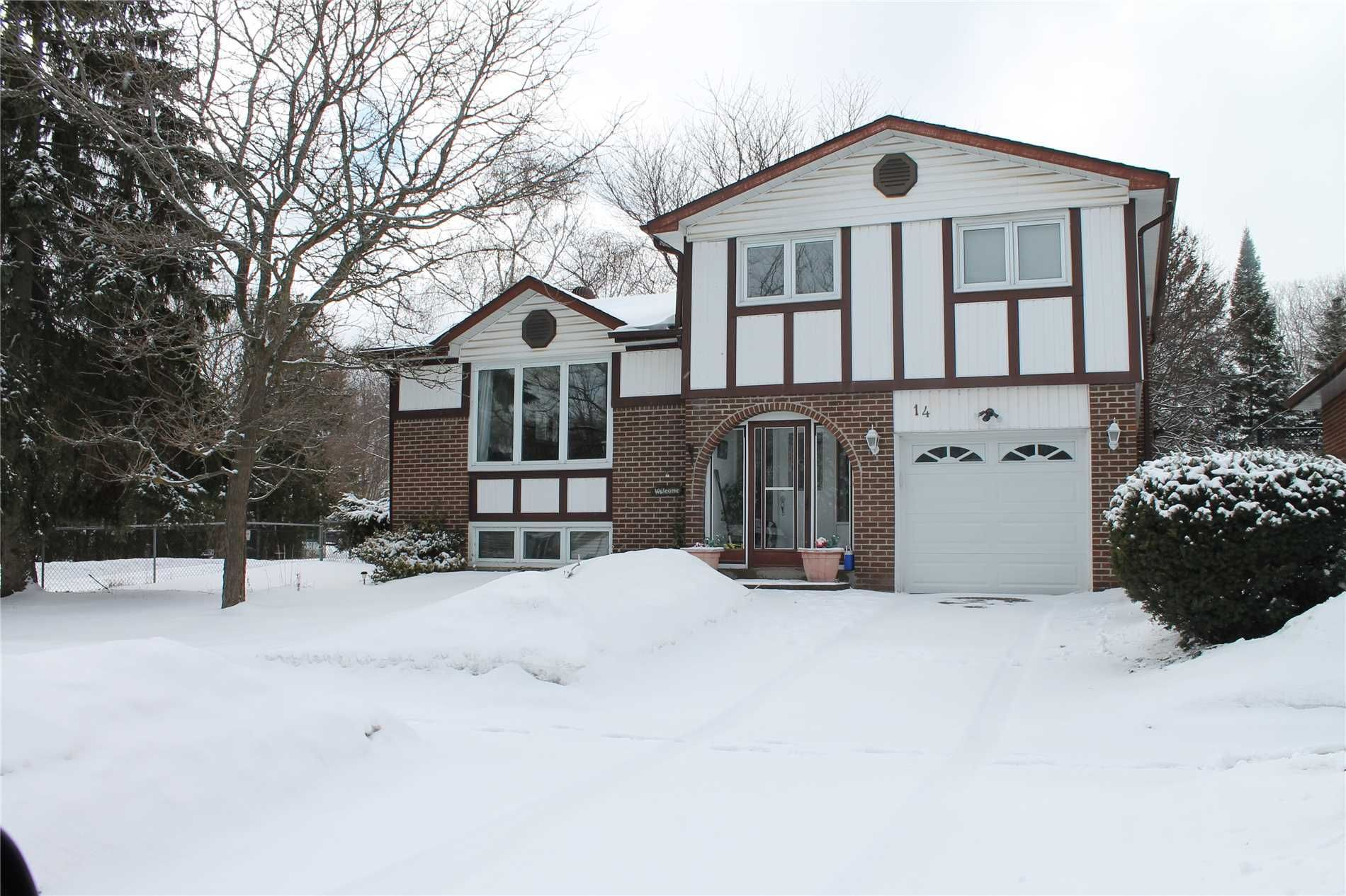 14 Springdale Drive for sale