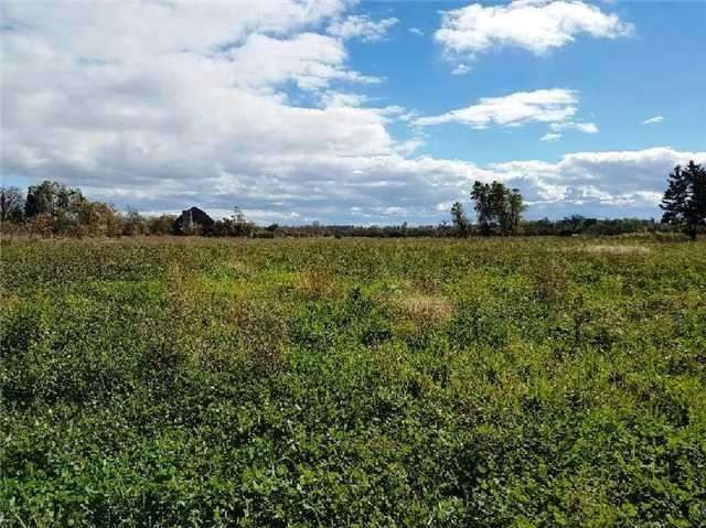 14354 5 Side Road Road for sale